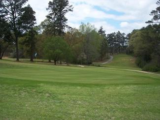 Houston County Georgia Golf Courses