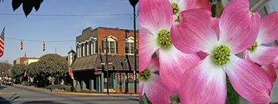 Things to do in Perry Georgia: 24th Annual Perry Dogwood Festival