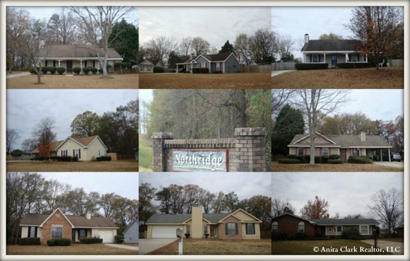 Northridge Subdivision in Centerville GA 31028