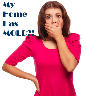 My Home has MOLD!