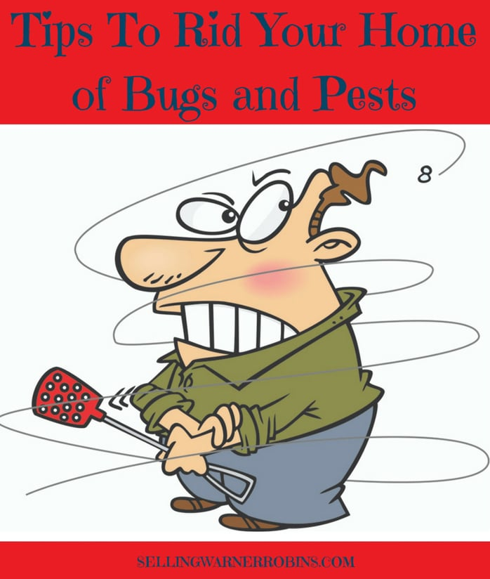 Tips To Rid Your Home of Bugs and Pests