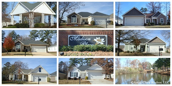 Madison Place Subdivision in Byron GA 31008
