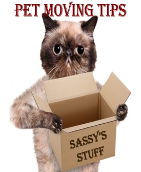 Pet Moving Tip