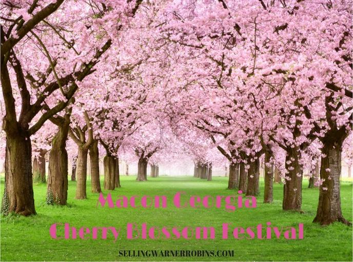Cherry Blossom Festival 2020 Macon Ga.Its Time For The Macon Ga Cherry Blossom Festival