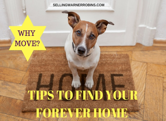 Tips to Find Your Forever Home